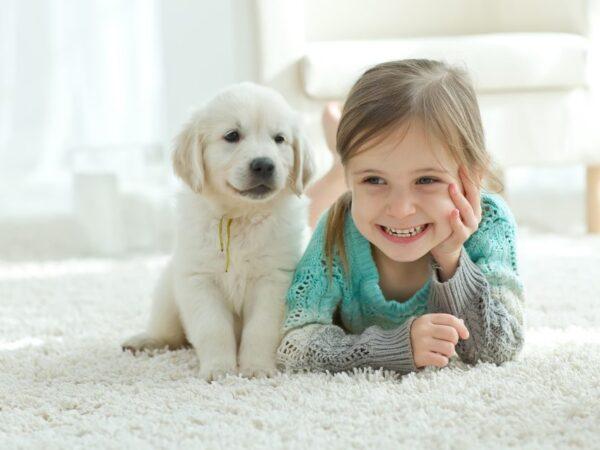 Los 9 mejores perros para niños